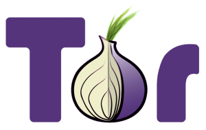 Tor_project_logo_hq-300x190.png